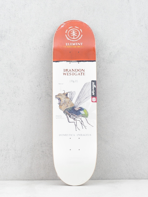 Deck Element Penxa Hybrid Wstgat