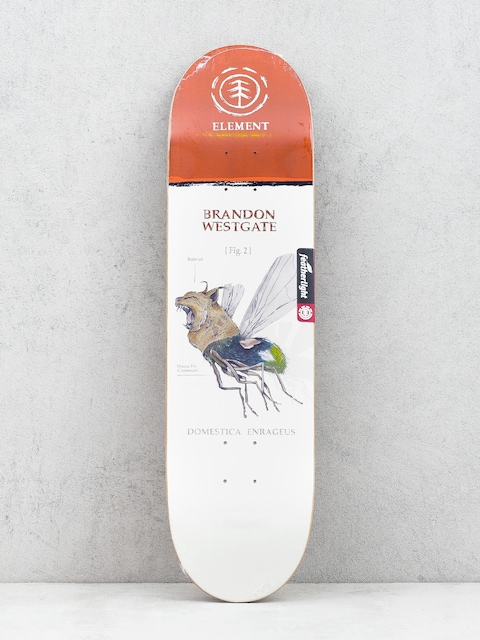 Deck Element Penxa Hybrid Wstgat (multi)