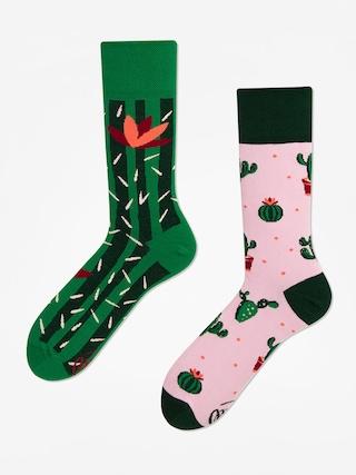 Skarpetki Many Mornings Summer Cactus (green/pink)