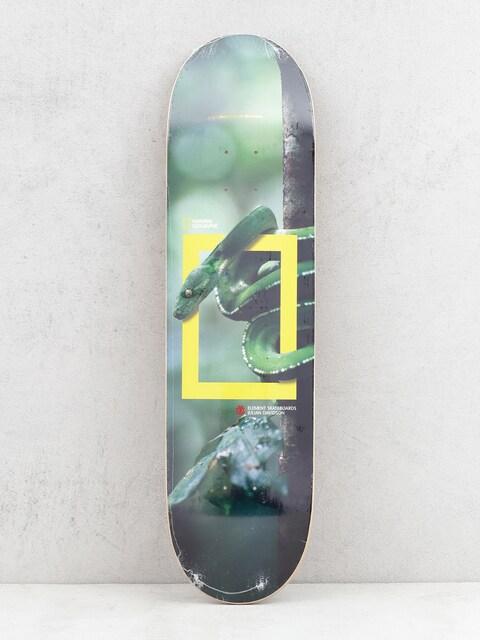 Deck Element Nat Geo Julian Snake (assorted)