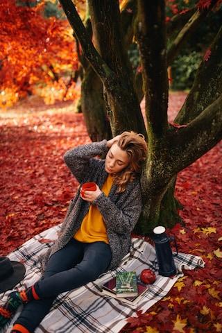 Skarpetki Many Mornings Rowan Berries (navy/red/orange)