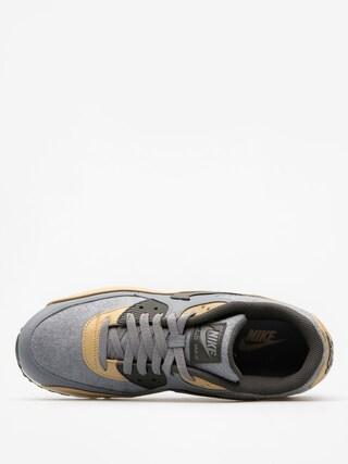 Buty Nike Air Max 90 (Premium cool grey/deep pewter mushroom wolf grey)