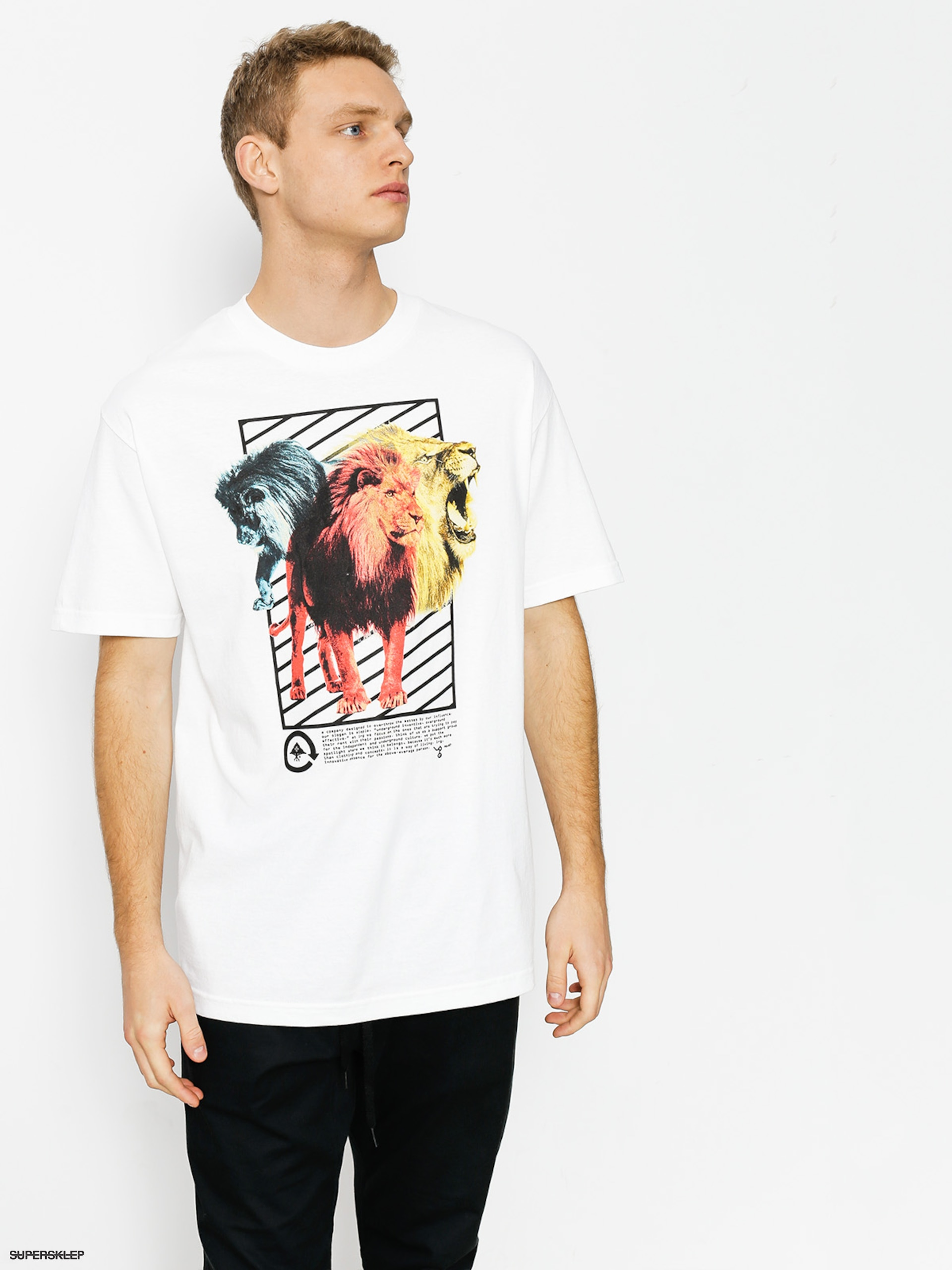T-shirt LRG Three s A Lion (white)