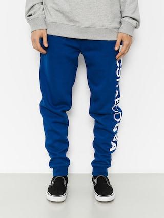 Spodnie DC Clewiston (sodalite blue)