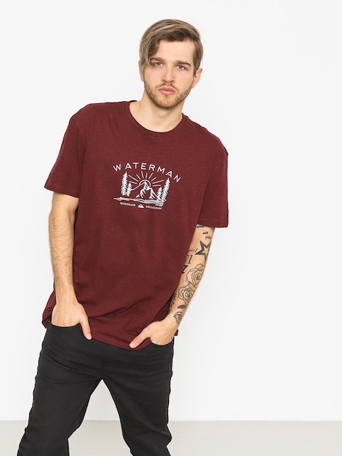 T-shirt Quiksilver Back To Nature (tawny port)