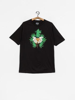 T-shirt DGK Roots (black)