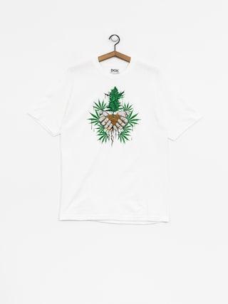T-shirt DGK Roots (white)